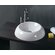 "WS Bath Collections Ceramica 18.5"" x 18.5"" Vessel Sink in White"