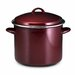 Enamel on Steel 12-qt. Stock Pot with Lid