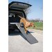 Folding Pet Ramp in Graphite