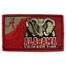 NCAA Bleached Welcome Mat