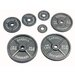 100 lbs Olympic Plate in Gray