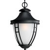 Fairview 1 Light Hanging Lantern