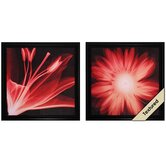 Lilium / Gerbera Wall Art (Set of 2)