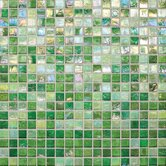"City Lights 12"" x 12"" Mosaic Blend Field Tile in Fiji"