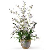 Dancing Lady Silk Orchid Arrangement in White