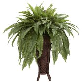 Boston Fern with Stand Silk Plant