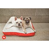 Safari Serengeti Rectangular Dog Bed in Splashed White / Lust