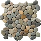 "Natural Stone 12"" x 12"" Venetian Pebble Mosaic in Multicolor"