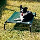 Coolaroo Dog Beds & Mats