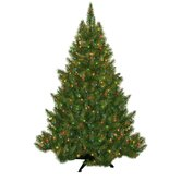 Evergreen Fir Prelit Christmas Tree with 250 Multicolored Lights