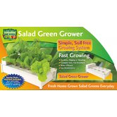 Salad Green Grower