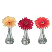 Floral Gerbera Daisies (Set of 3)