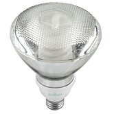 23 Watt Par 38 Covered Flourescent Light Bulb