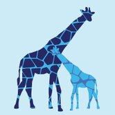 Animal - Reticulated Giraffe Stretched Wall Art