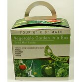 Vegetable Garden Collection (Set of 6)