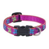 "Wing It 1/2"" Adjustable Dog Collar"