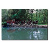 Clydesdales On Green Pond Canvas Art