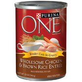 Wholesome Chicken / Brown Rice Wet Dog Food (13-oz, case of 12)