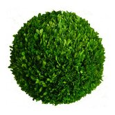 "Boxwood 22"" Ball"