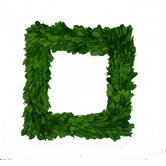 Boxwood 11&quot; Square Wreath