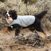 Swamp Cooler Dog Cooling Vest