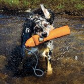 Lunker Retrieval Dog Toy