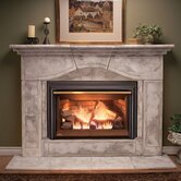Inspiration Direct Vent Fireplace Insert
