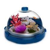 Aquarium Bundle