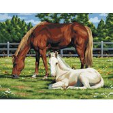 Painting by Numbers Artist Canvas Series Horses Field Set