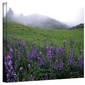 Kathy Yates ''Figueroa Mountain with Fog'' Canvas Art
