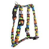 Neon Skulls Roman Harness