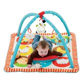 Funky Farmyard Activity Gym