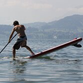 Shark Stand Up Paddle Board
