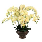 "32"" Lifelike Silk Orchid Arrangement"