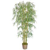 6' Silk Bamboo Tree with Wicker Basket Planter