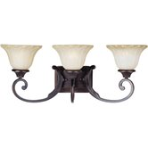 Allentown  Vanity Light in Oil Rubbed Bronze