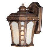 Lake Shore VX Outdoor Wall Lantern in Antique Pecan