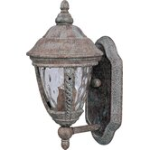Whittier DC Small Outdoor Wall Lantern in Earth Tone