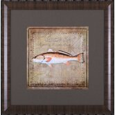 Ocean Fish IX Framed Artwork