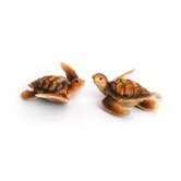 Turtle Porcelain Turtles Figurine Set