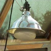 Wonderlight with Fixture