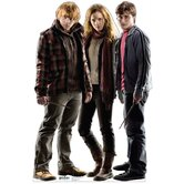 Ron, Hermione, Harry Cardboard Stand-Up