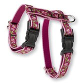 Lupine Pet Cat Leashes, Colars, & Harnesses