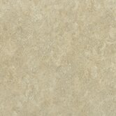 "Palmetto 13"" x 13"" Floor Tile in Beige"
