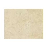 "Costa D'Avorio 10"" x 13"" Wall Tile in Beige"