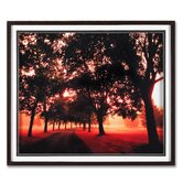 "Morning Walk Framed Print Art - 24"" X 28"""