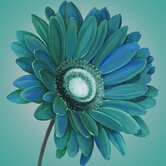 Teal Gerbera Canvas