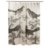 Ornithology Shower Curtain
