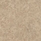 Alterna Dellaporte 16&quot; x 16&quot; Vinyl Tile in Taupe