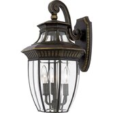 "19"" Georgetown Outdoor  Wall Lantern in Imperial Bronze"